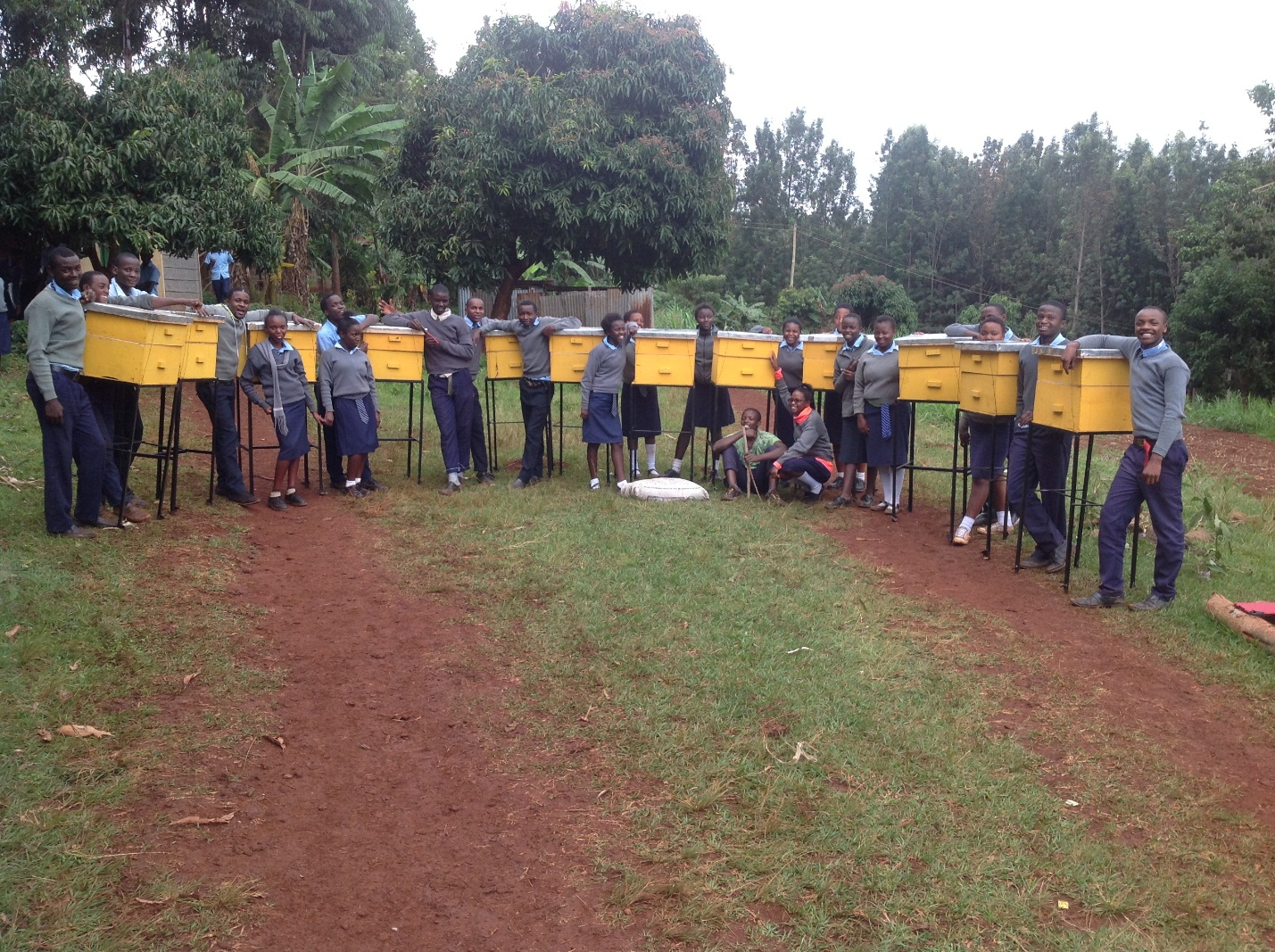 Distributed Beehives to local schools